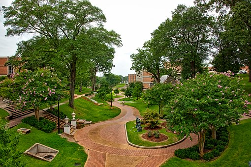 Landscaping and Grounds Management